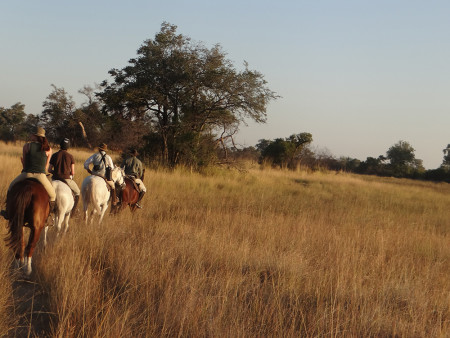 botswana_horseback_safari
