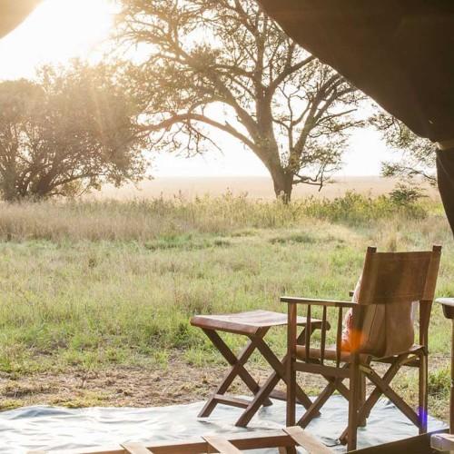 Serengeti Safari Camp, Serengeti