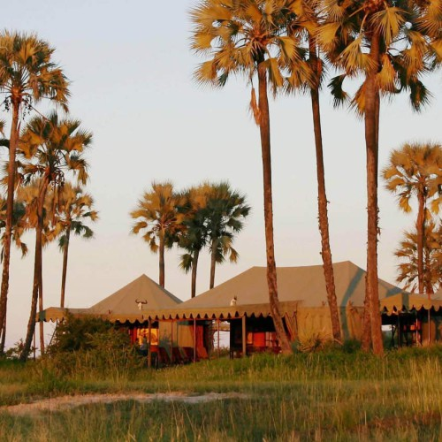 Jack's Camp and San Camp, Kalahari