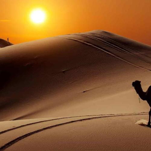 Treks & Safaris in Morocco
