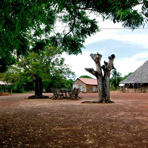 Karanambu Trust and Lodge, Rupununi