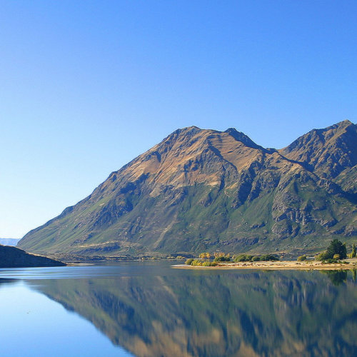 New Zealand Wildlife & Wilderness Drive