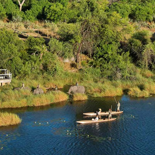 Abu Camp, Okavango Delta