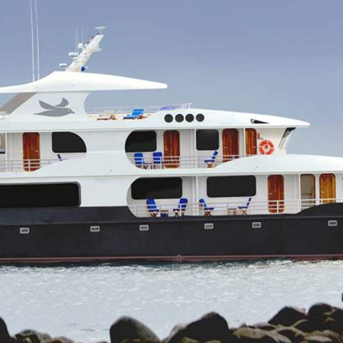 Petrel Luxury Galapagos Catamaran
