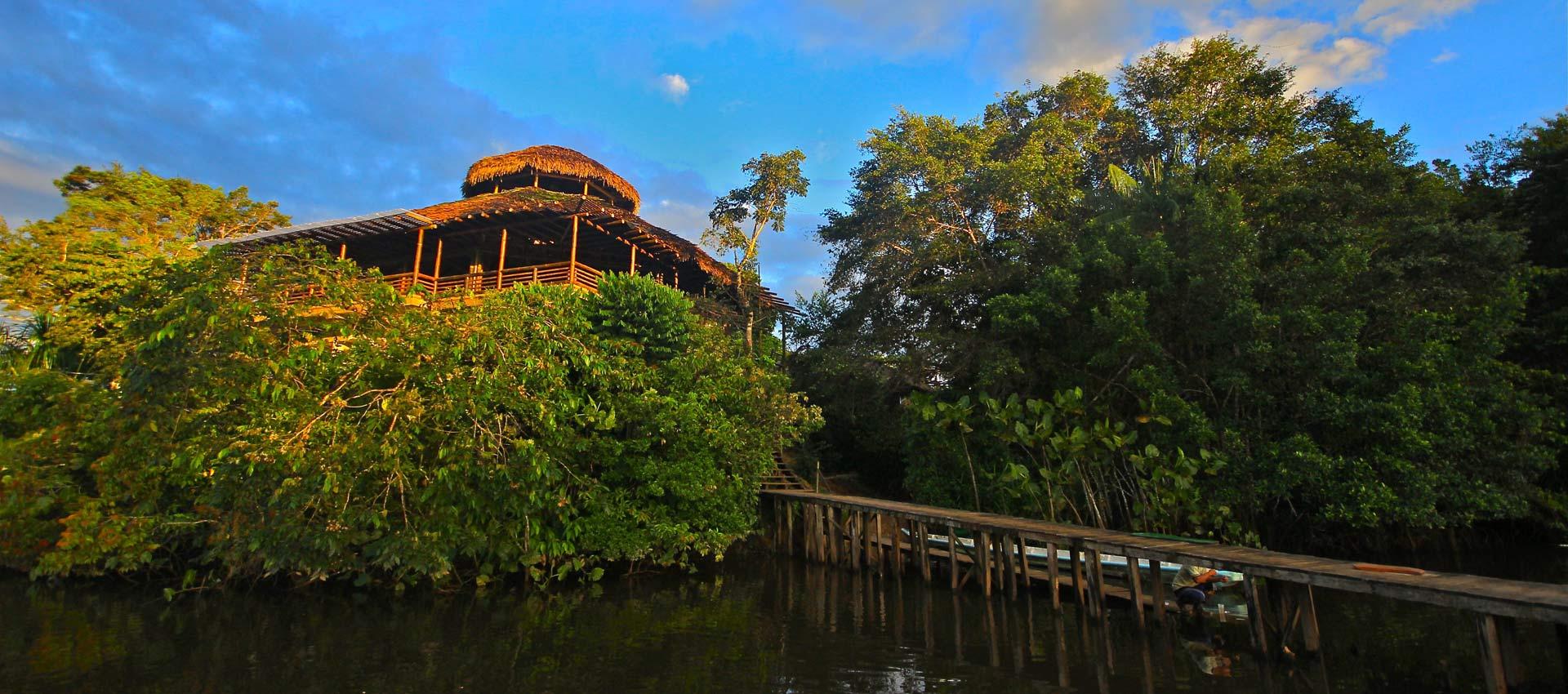 La Selva Ecolodge, Amazon