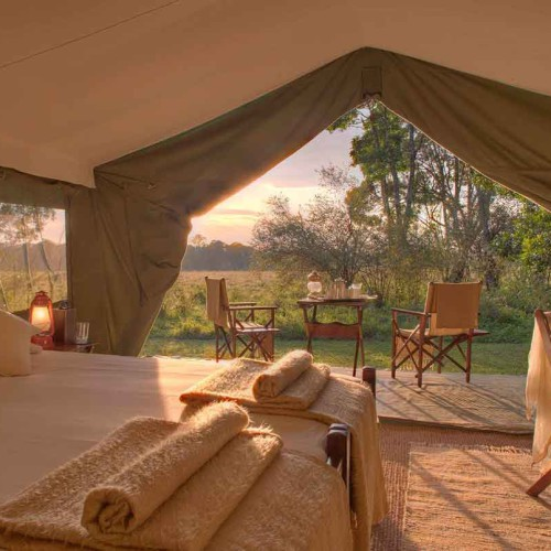 Elephant Pepper Camp, Masai Mara