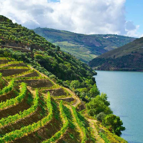 Portugal: The Douro, A Regal Experience
