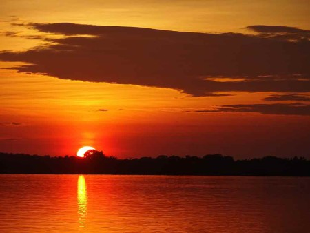 Sunset-at-Rui-Mutum,-Pantanal---Cat-Blog