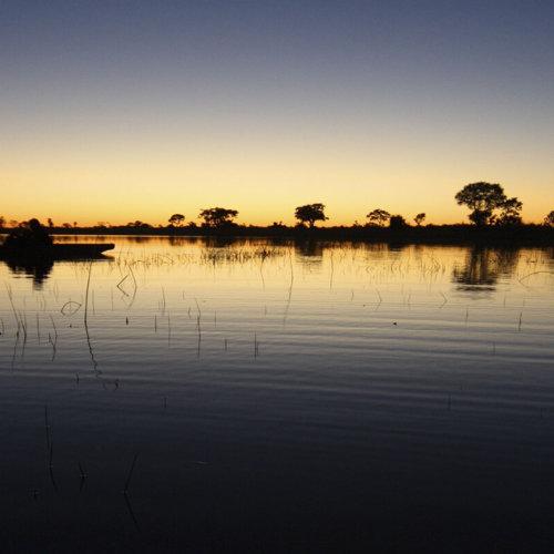 The Botswana Experience