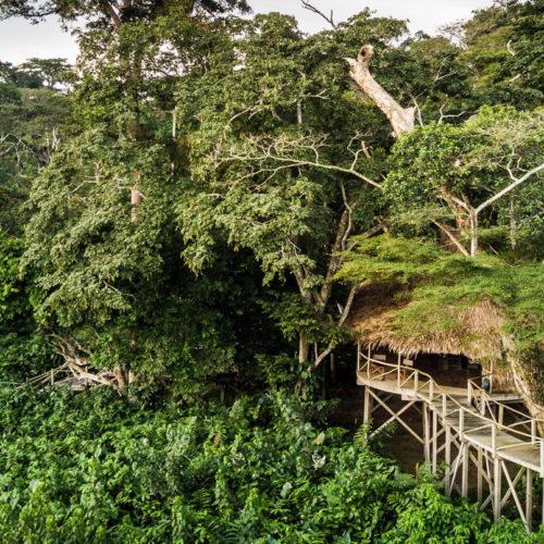 Ngaga Camp, Republic of the Congo