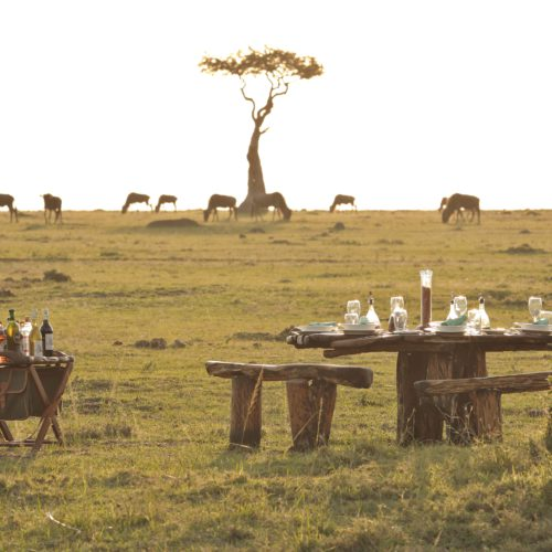 Saruni Wild, Masai Mara