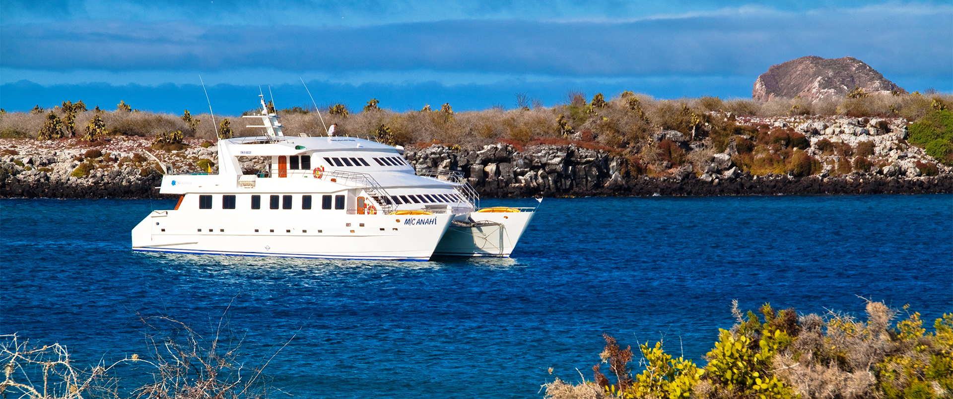 Galapagos and the Anahi Cruise