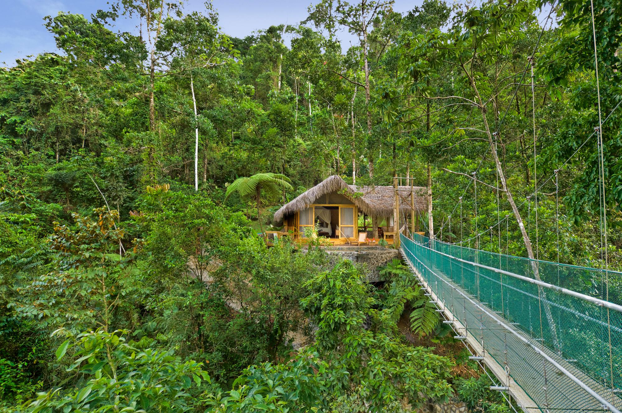 Jungle, Cloudforest & Coast