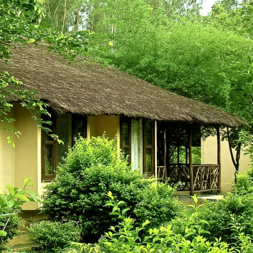 Jim's Jungle Retreat, Jim Corbett National Park